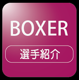 menu_boxer_icon